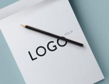 Logo Vol.01